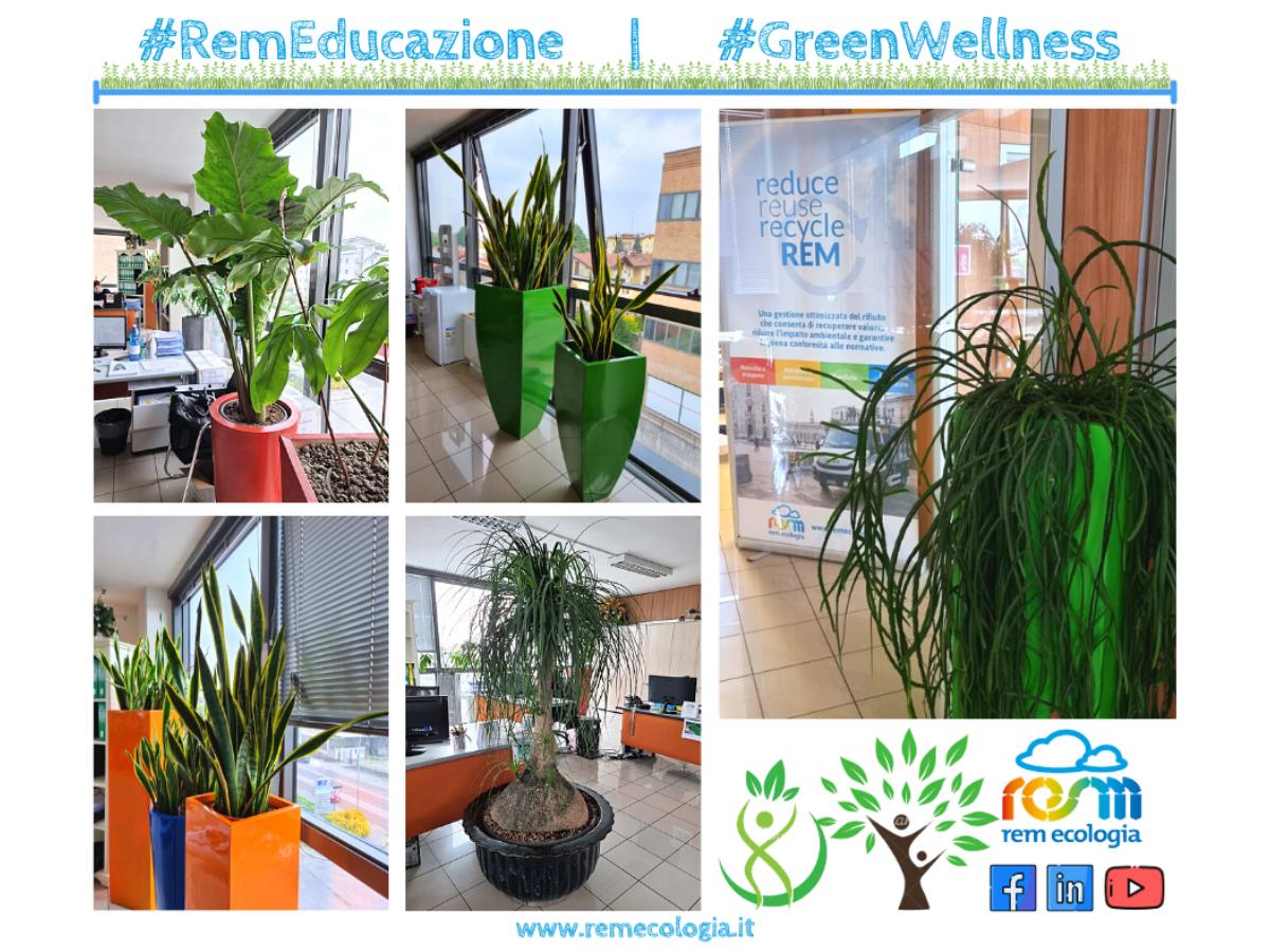 GreenWellness | Benefici del green negli ambienti di lavoro