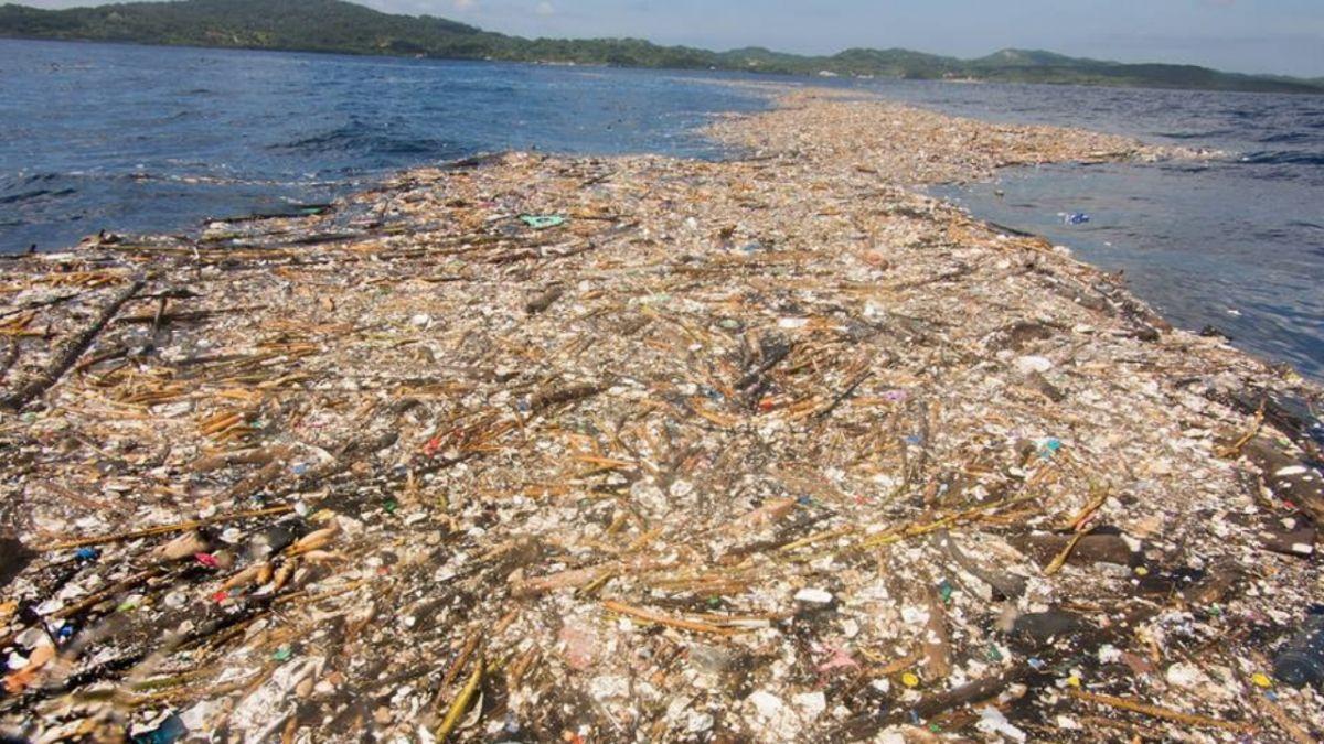 Caraibi: paradiso tropicale o inferno di plastica?